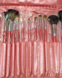 ANOTHER YOU 12 BRUSH SET